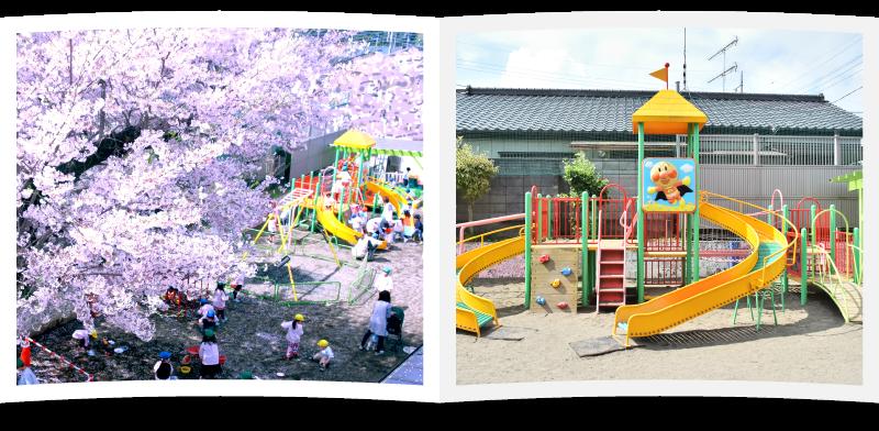 古河保育園では様々な遊具が揃っています。また、春になると園内の桜の木が満開になります。